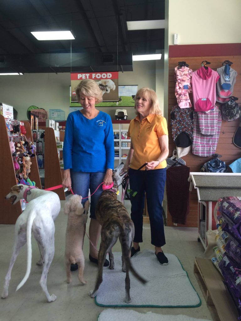 Greyhound Pets of America LA/MS Volunteers at Saylor's Pet Depot yesterday